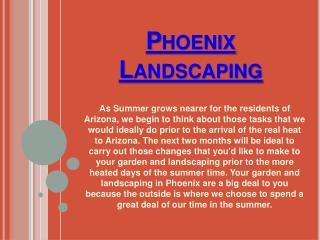 Landscaping Phoenix
