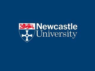 Theme A6: CO2 Transport Infrastructure  Newcastle University