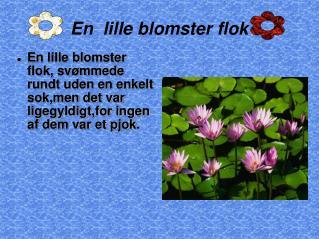 En  lille blomster flok