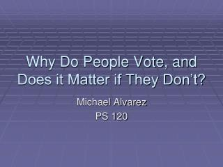 Why Do People Vote, and Does it Matter if They Don�t?