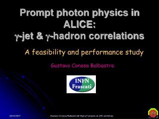 Prompt photon physics in ALICE:  g -jet &  g -hadron correlations