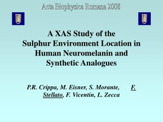 A XAS Study of the  Sulphur Environment Location in  Human Neuromelanin and  Synthetic Analogues