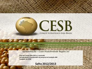 Apresentação  – Case  Produtividade Região Sul Eltje  Jan  Loman  Filho ( M.Sc .), Associado