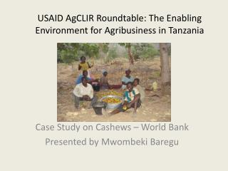 USAID AgCLIR Roundtable: The Enabling Environment for Agribusiness in Tanzania