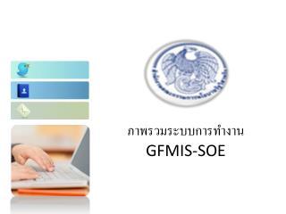 ภาพรวมระบบการทำงาน  GFMIS-SOE