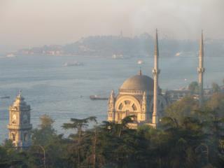 Mechanisms in organic dust related airway diseases Antalya April 29 th  2005