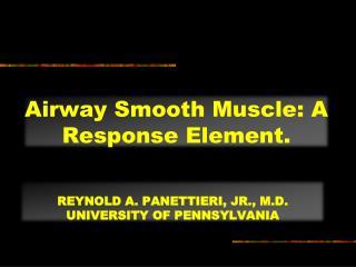 Reynold  a. panettieri, Jr., M.D. UNIVERSITY OF PENNSYLVANIA