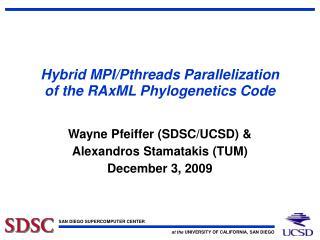 Hybrid MPI/Pthreads Parallelization of the RAxML Phylogenetics Code