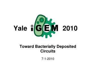 Yale 2010