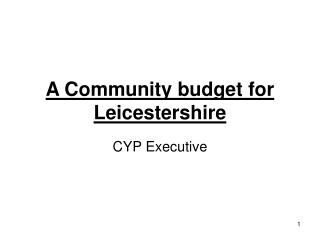 A Community budget for Leicestershire