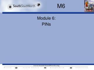 Module 6:  PINs
