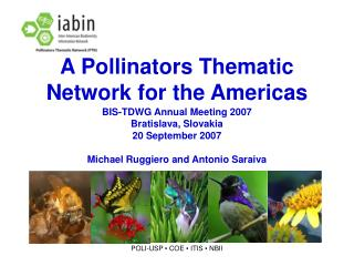 A Pollinators Thematic Network for the Americas
