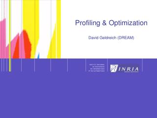 Profiling & Optimization David Geldreich (DREAM)