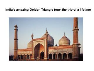 India's amazing Golden Triangle tour- the trip of a lifetime