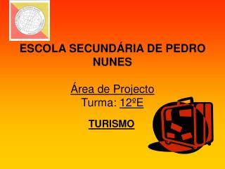 ESCOLA SECUND RIA DE PEDRO NUNES   rea de Projecto Turma: 12 E