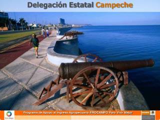Delegación Estatal  Campeche