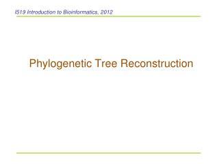 Phylogenetic Tree Reconstruction