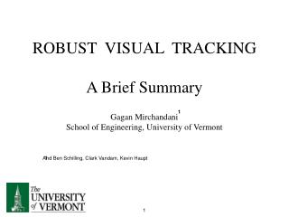 ROBUST  VISUAL  TRACKING A Brief Summary