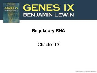 Regulatory RNA