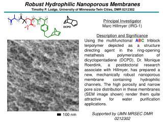Robust Hydrophilic Nanoporous Membranes