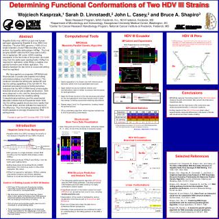 Determining Functional Conformations of Two HDV III Strains