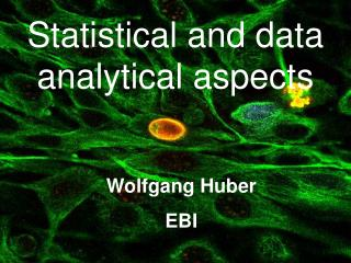Statistical and data analytical aspects