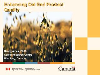 Enhancing Oat End Product Quality