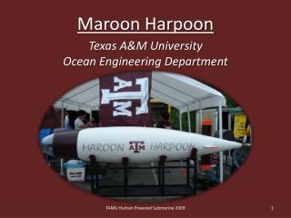 Maroon Harpoon