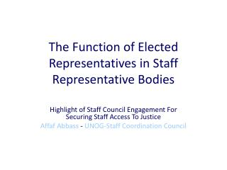 The Function of Elected  Representatives in Staff Representative Bodies