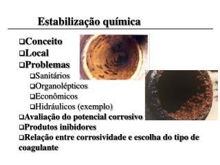 Conceito Local Problemas Sanitários Organolépticos Econômicos Hidráulicos (exemplo)