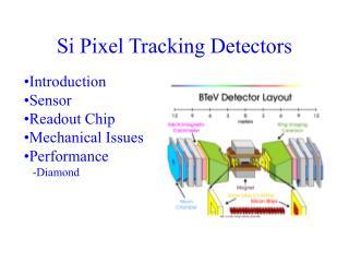Si Pixel Tracking Detectors