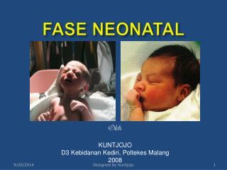 FASE NEONATAL