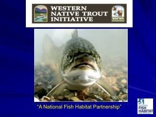 """A National Fish Habitat Partnership"""