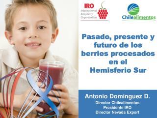 Pasado, presente y futuro de los berries procesados en el Hemisferio Sur