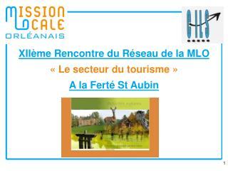 XIIème Rencontre du Réseau de la MLO «Le secteur du tourisme» A la Ferté St Aubin