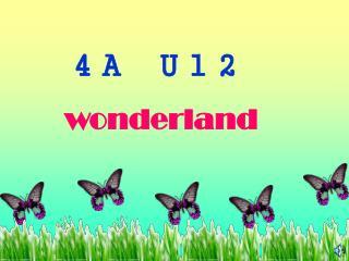 4A U12 wonderland