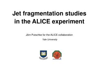 Jet fragmentation studies in the ALICE experiment