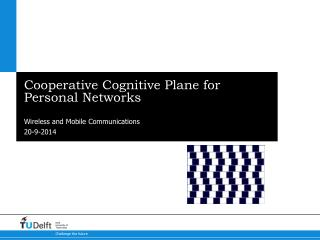 Cooperative Cognitive Plane for Personal Networks