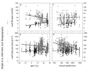 Wright et al. 2005 Glob. Ecol.  Bioegeography