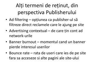 Alți termeni de reținut, din perspectiva Publisherului