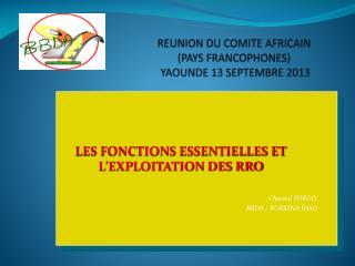 REUNION DU COMITE AFRICAIN  (PAYS FRANCOPHONES)   YAOUNDE 13 SEPTEMBRE 2013
