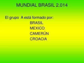MUNDIAL BRASIL 2.014