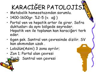 KARACİĞER PATOLOJİSİ