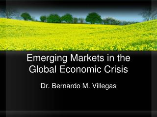 Emerging Markets in the Global Economic Crisis
