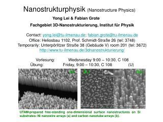 Fachgebiet 3D-Nanostrukturierung ,  Institut f�r Physik