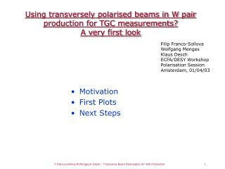 Using transversely polarised beams in W pair production for TGC measurements?  A very first look