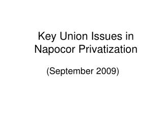 Key Union Issues in Napocor Privatization  September 2009