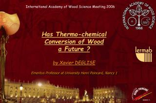 Has Thermo-chemical  Conversion of Wood  a Future ? by Xavier DEGLISE