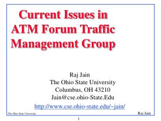 Current Issues in ATM Forum Traffic Management Group