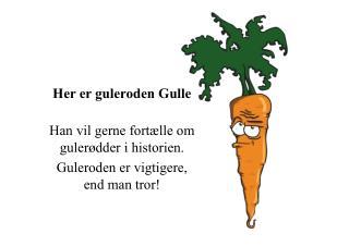 Her er guleroden  Gulle Han vil gerne fortælle om  gulerødder i historien.